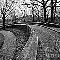 Stone Road And Path by Mark Miller