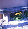 Stone Slab Bench 1 by Tamara Kulish