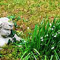 Stone Statue by Jeelan Clark