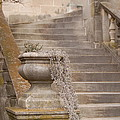 Stone Steps National Cathedral by James DeFazio
