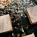 Stone Walking by Yen