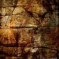 Stone Wall by Judy Wood