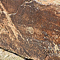 Stone Written by Susan Herber