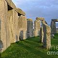Stonehenge Stones by Denise Mazzocco
