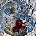 Stones And Fall Leaves Under Water-41 by Larry Jost