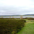 Stones In Arc Of Ring Of Brodgar by Denise Mazzocco