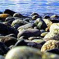 Stones To Admire by Marcello Cicchini