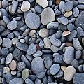 Stoney Grey Soils  by Ronan Courell
