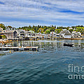 Stonington In Maine by Olivier Le Queinec