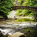 Stony Brook State Park by Sara Frank