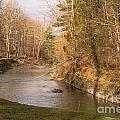 Stony Brook by William Norton