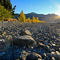 Stony Foreshore Of Lake Wanaka by Jenny Setchell
