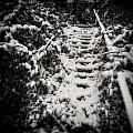 Stony Steps Covered With Snow by Peter v Quenter