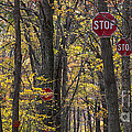 Stop A Subtle Suggestion To Keep Out by Jeannette Hunt