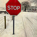 Stop Sign by Adrian Evans