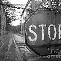 Stop Sign by Michael Krek