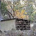 Storage Shed In Color by Marge Cari