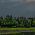 Storm Clouds And Trees by Optical Playground By MP Ray