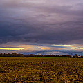 Storm Coming by Michael J Samuels