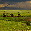 Storm Crossing Prairie 1 by Robert Frederick