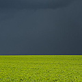 Storm Field Abstract by Tim Gainey