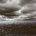 Storm Front by Mark Rogan