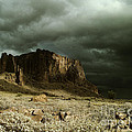 Storm In The Superstitions by Judy Bottler