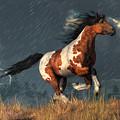 Storm Mustang by Daniel Eskridge
