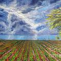 Storm Over Homestead by Alina Martinez-beatriz