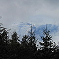 Stormy Day At Mt. Rainier by Kay Gilley
