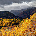Stormy Fall Along The Alpine Loop - Utah by Gary Whitton