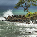 Stormy Maui Morning by Sandra Bronstein