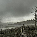 Stormy Oregon Coast by Shawn St Peter
