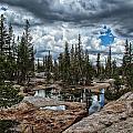 Stormy Skies by Shauna Milton