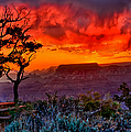 Stormy Sunset Greeting Card by Greg Norrell