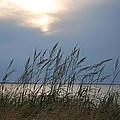 Stormy Sunset Prince Edward Island II by Micheline Heroux