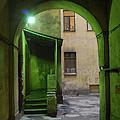 The Small Yard by Anatoliy Spiridonov