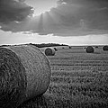 Straw Bales And Sunrays Bw by David Dehner