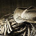 Straw Hat With Gloves On A Bale Of Hay by Sandra Cunningham