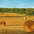 Straw Wheels - North Pickering by Allan OMarra