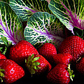 Strawberries And Kale. by David Clemens