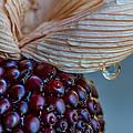 Strawberry Corn by Randy Walton
