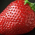 Strawberry by FL collection