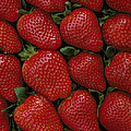 Strawberry Flats by David Marr