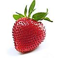 Strawberry On White Background by Elena Elisseeva