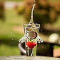Strawberry Splash by Kerri  Lane