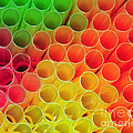 Straws In Color by Paul Ward