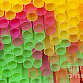 Straws by Michal Boubin