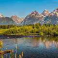 Stream At The Tetons by Robert Bynum