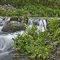 Stream Falls by Randy Horne